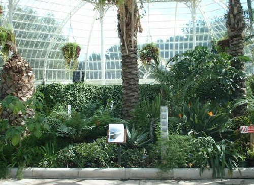 Palm House in Sefton Park